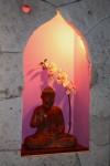 buddhainside