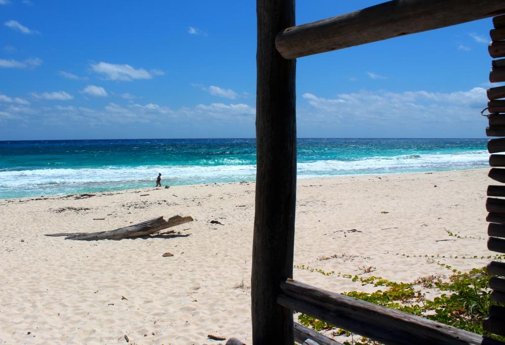 lynda on beach by wood
